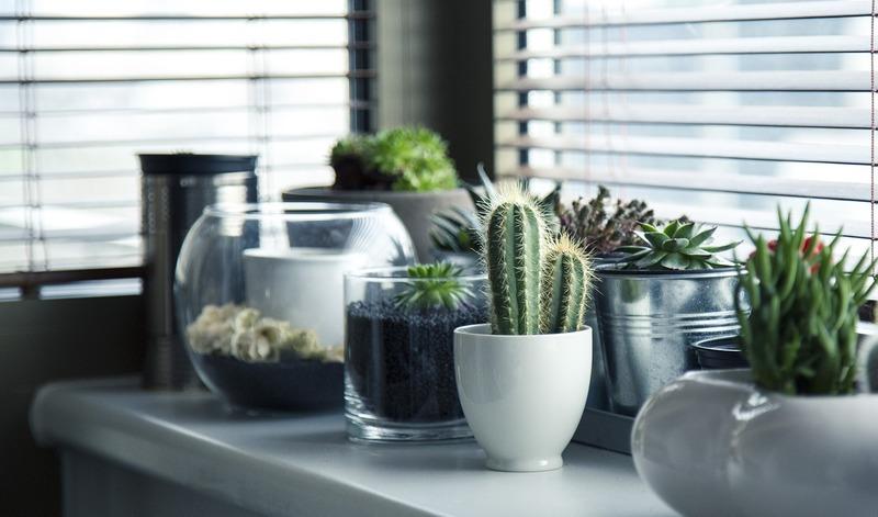 Vasos como objetos de decoração