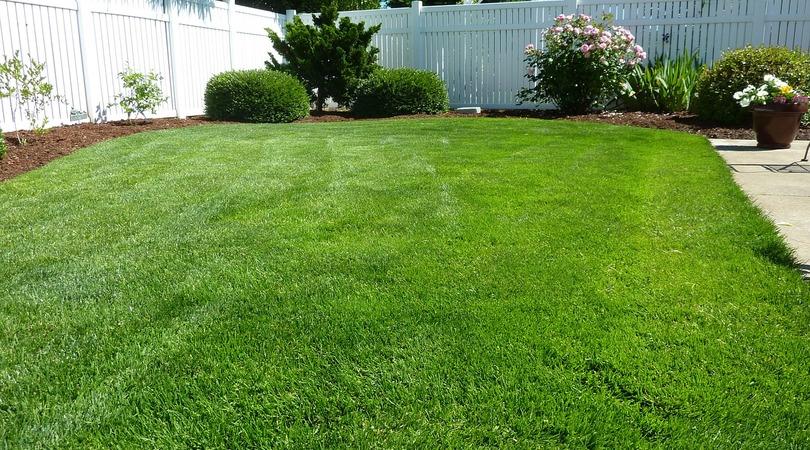Como aproveitar o terreno da sua casa